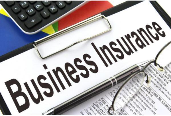 biz insurance