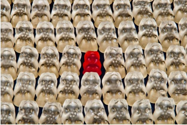 Build A Stand-Out Business Right from The Start