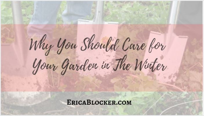 Why You Should Care For Your Garden In The Winter