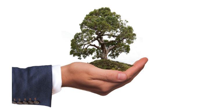 Create a Greener Workplace